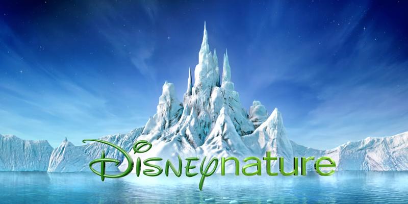 迪士尼大揭秘:华特迪士尼公司五大部门之电影电视娱乐