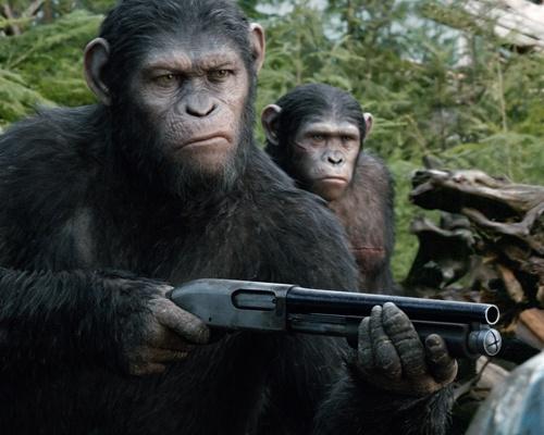 也讲的是猩猩打冰球的事 但绝对不是全能猩猩 我记得他们球队最后