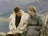 银幕搭档情史(六):伯格曼与丽芙·乌曼,一半是海水一半是火焰