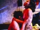 从风月片到三级皇朝,细数香港色情电影50年(十一)