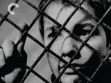 被出卖的《电影手册》——法国电影新浪潮50年